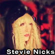 Stevie Nicks Impersonator